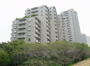 パークハウス多摩川南弐番館