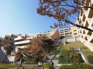 東急ドエル横浜ヒルサイドガーデン弐番館