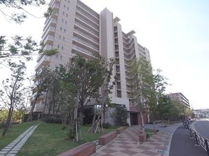 カサーレ川崎ネクシア